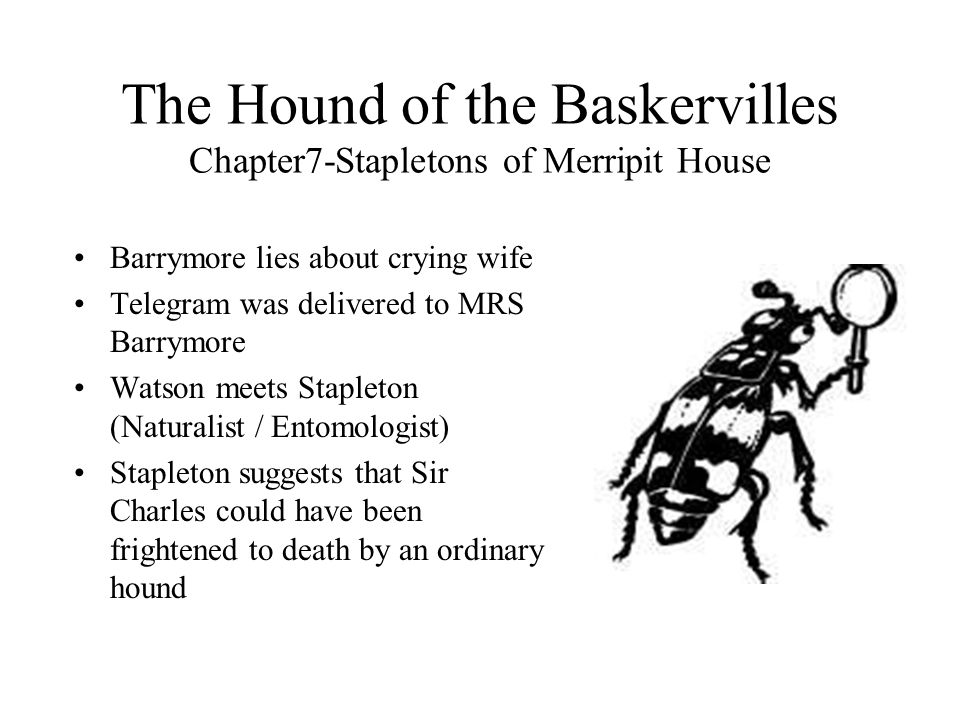 The Hound of the Baskervilles Chapter7-Stapletons of Merripit House