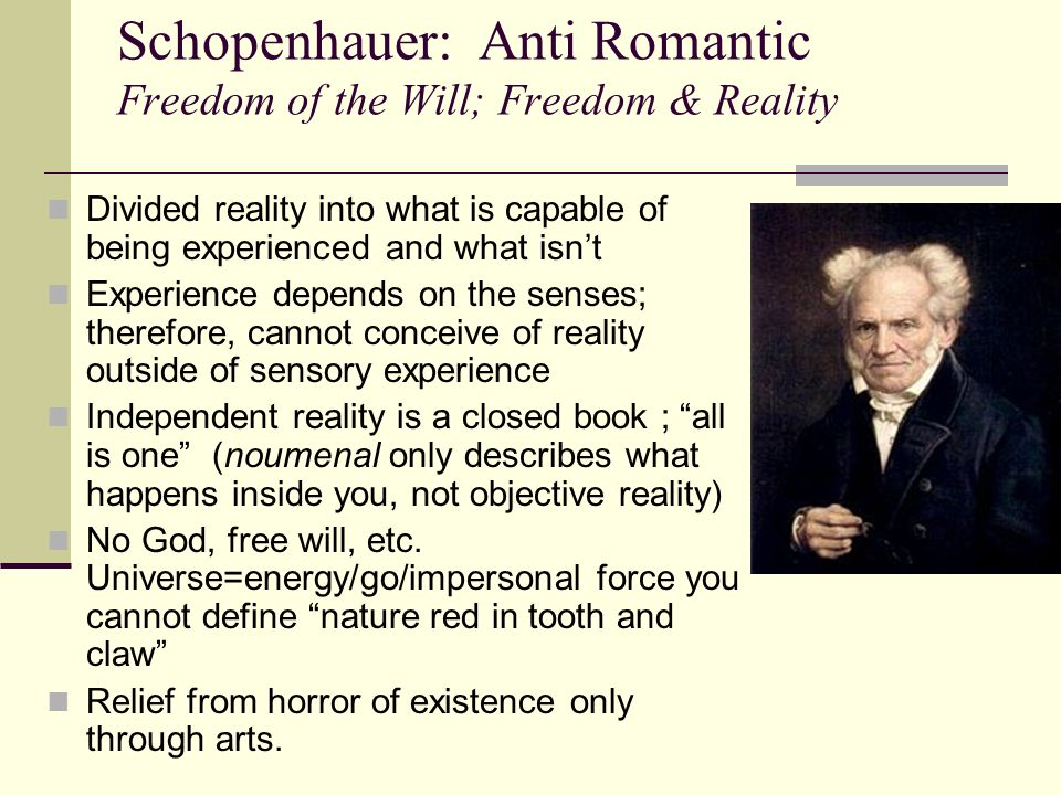 Schopenhauer: Anti Romantic Freedom of the Will; Freedom & Reality