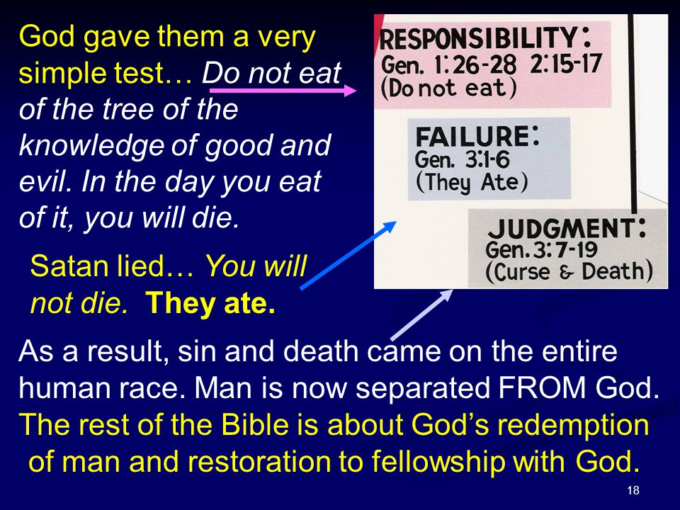 God gave them a very simple test… Do not eat of the tree of the knowledge of good and evil. In the day you eat of it, you will die.