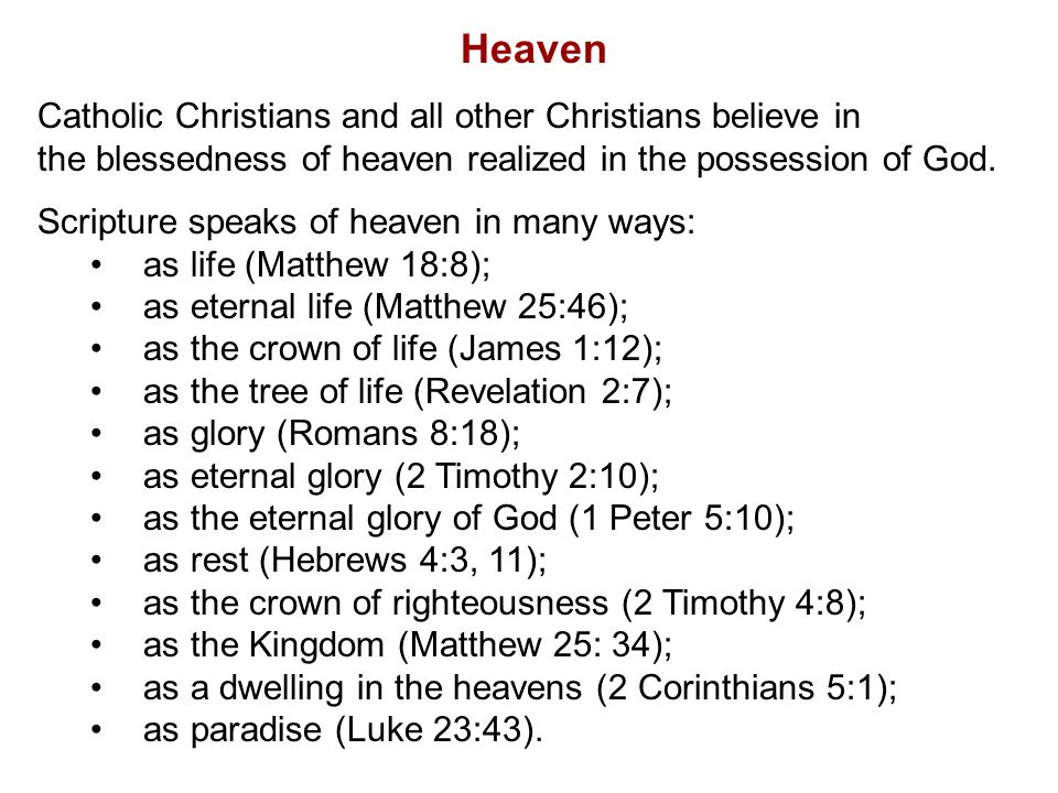 Heaven Catholic Christians and all other Christians believe in