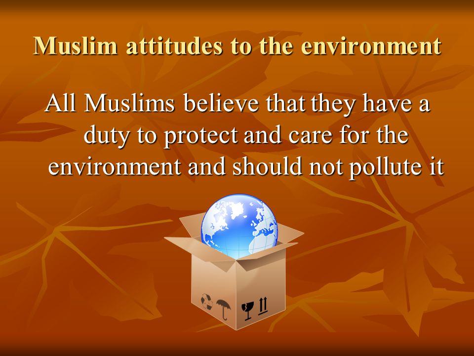 Muslim attitudes to the environment