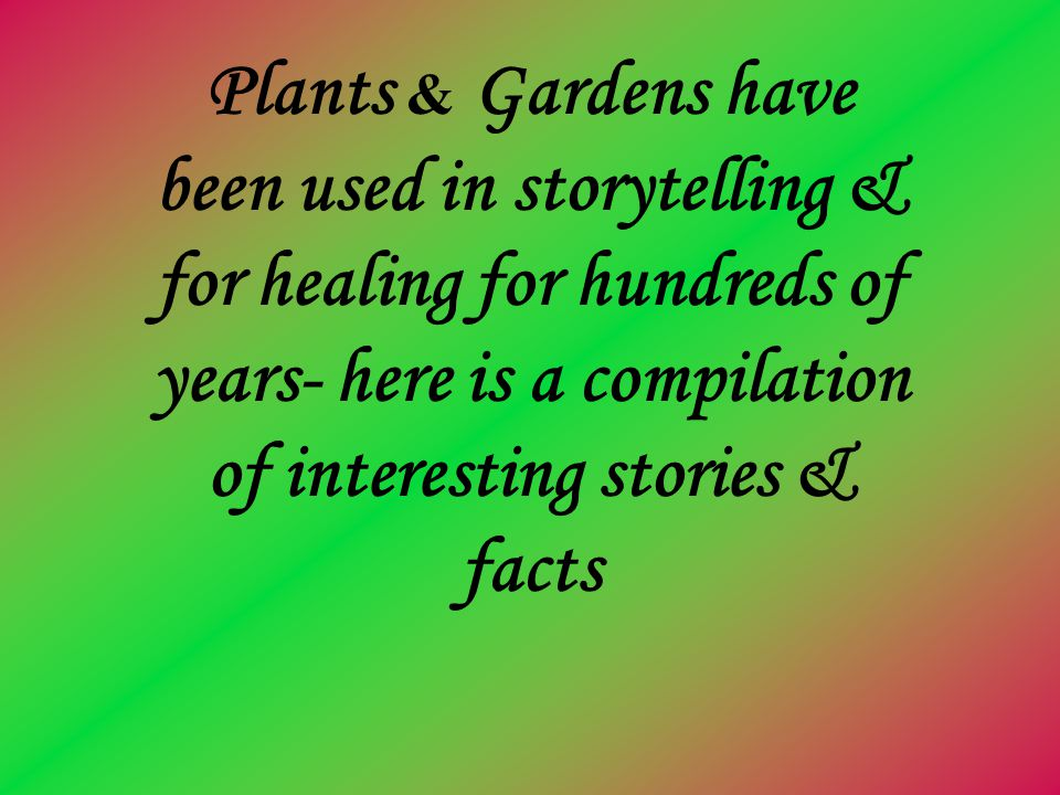 Plants & Gardens have been used in storytelling & for healing for hundreds of years- here is a compilation of interesting stories & facts