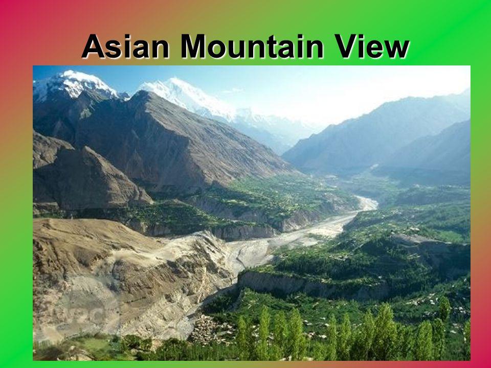 Asian Mountain View