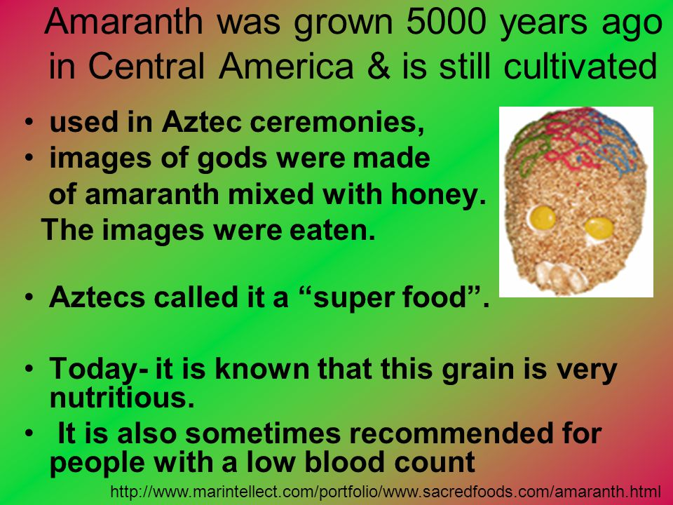 Amaranth was grown 5000 years ago in Central America & is still cultivated