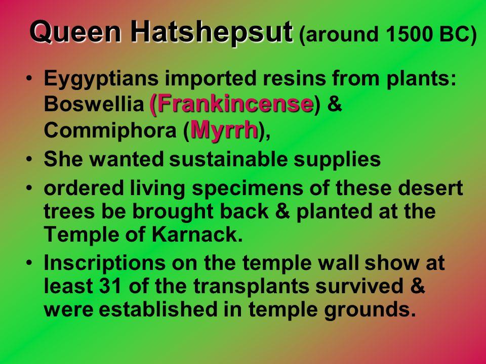 Queen Hatshepsut (around 1500 BC)