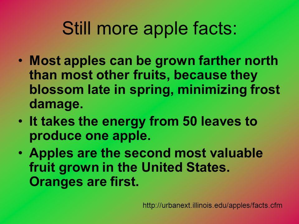 Still more apple facts: