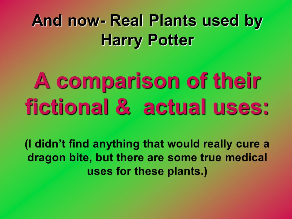 And now- Real Plants used by Harry Potter A comparison of their fictional & actual uses: (I didn't find anything that would really cure a dragon bite, but there are some true medical uses for these plants.)