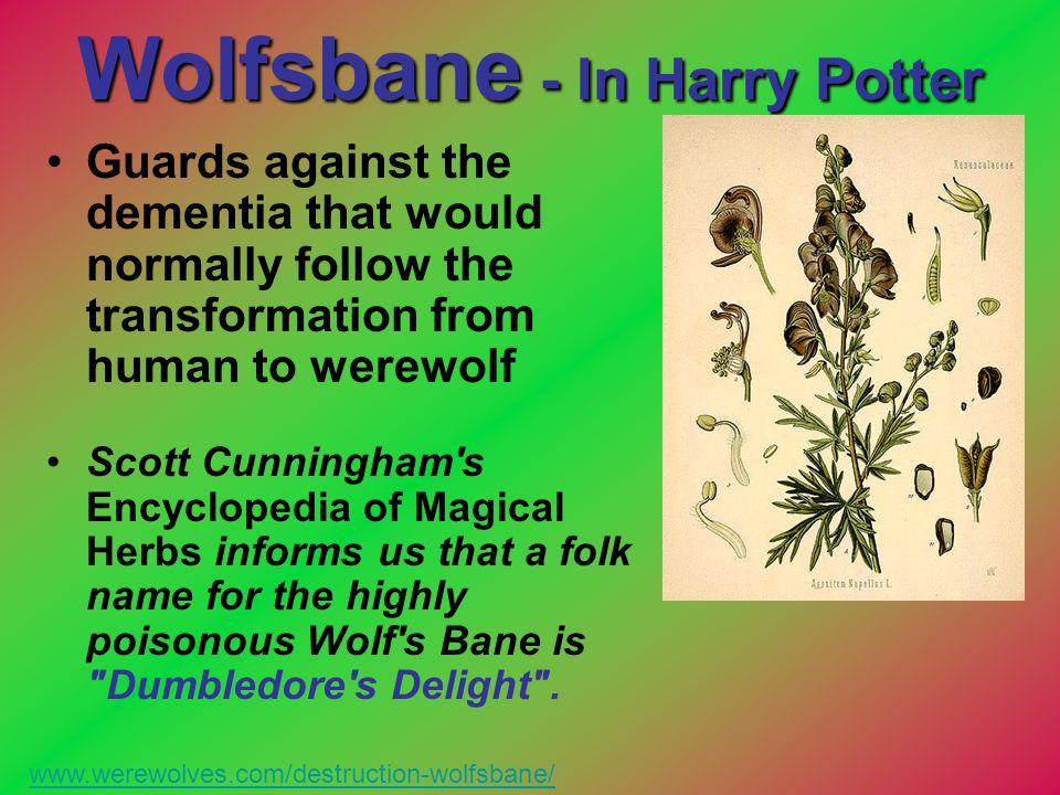 Wolfsbane - In Harry Potter