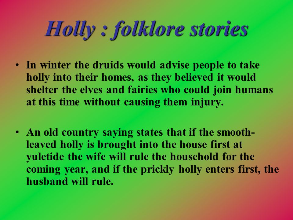 Holly : folklore stories