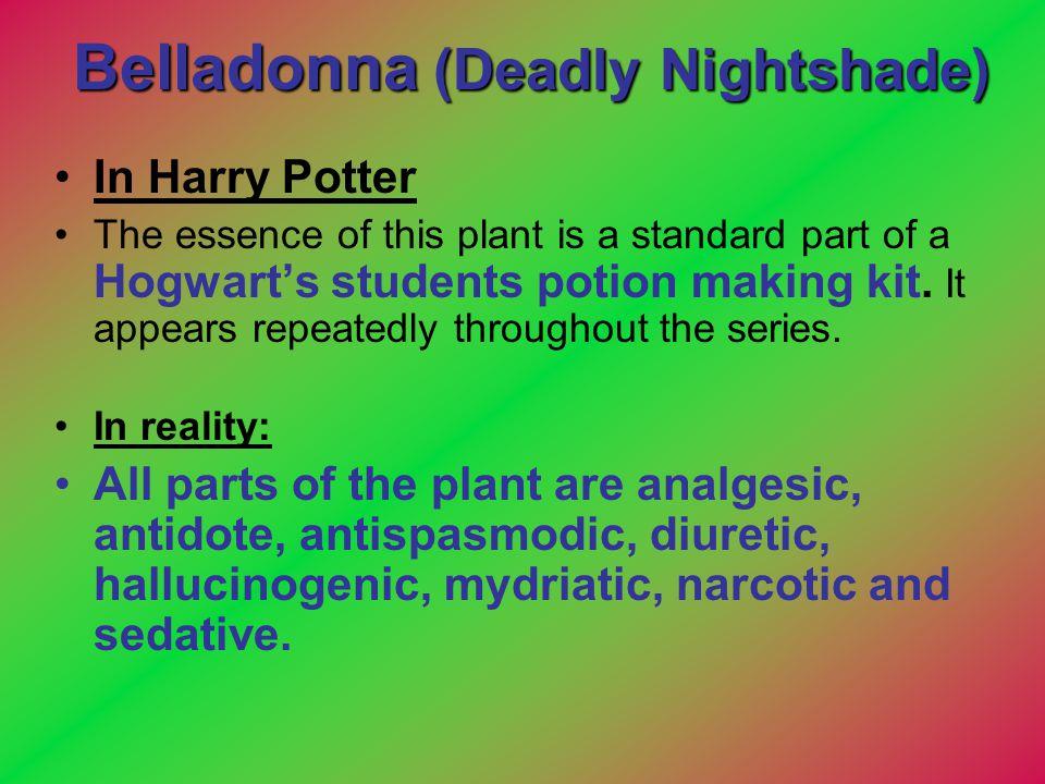 Belladonna (Deadly Nightshade)