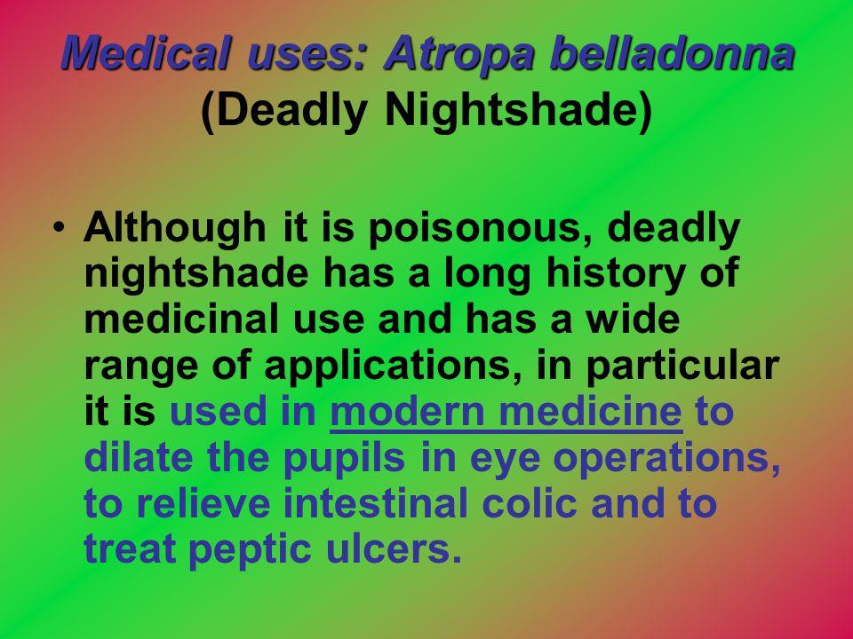 Medical uses: Atropa belladonna (Deadly Nightshade)