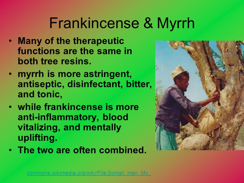 Frankincense & Myrrh Many of the therapeutic functions are the same in both tree resins.
