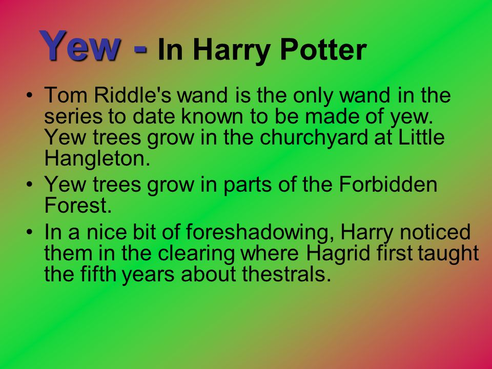 Yew - In Harry Potter