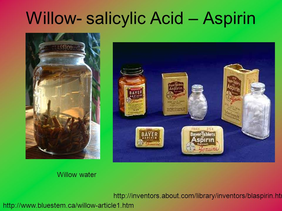 Willow- salicylic Acid – Aspirin