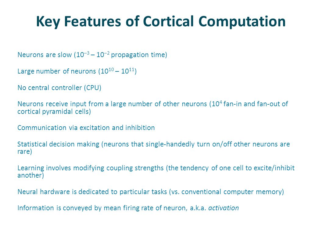 Key Features of Cortical Computation