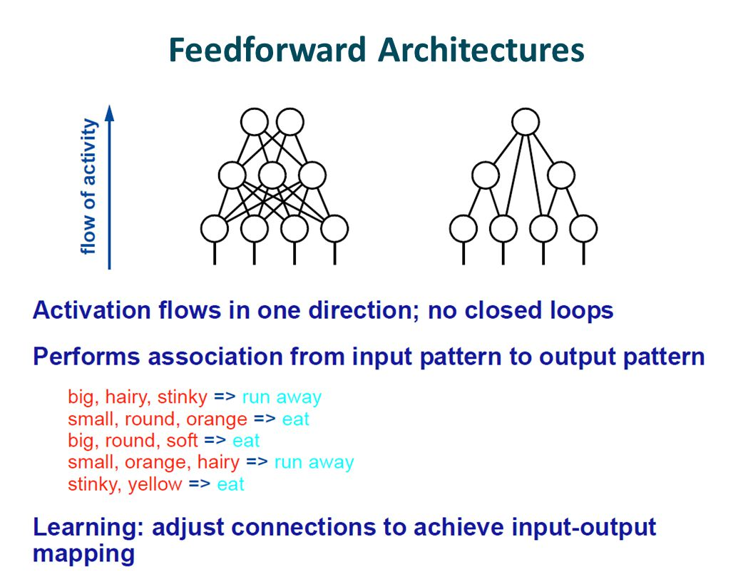 Feedforward Architectures