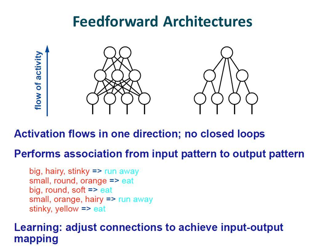 Feedforward Architectures