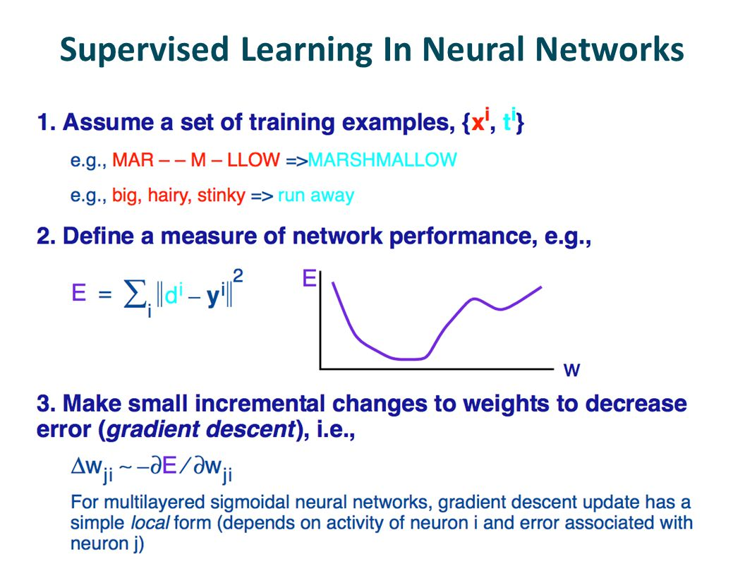 Supervised Learning In Neural Networks