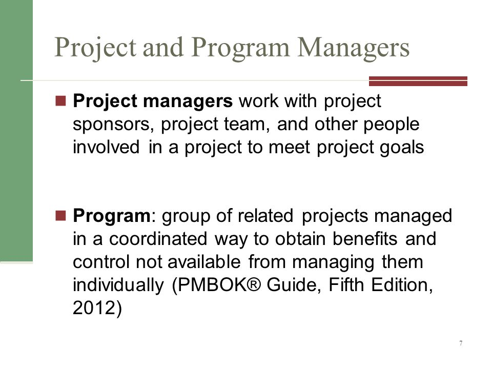 Project and Program Managers