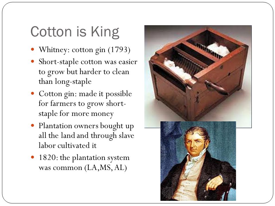 Cotton is King Whitney: cotton gin (1793)