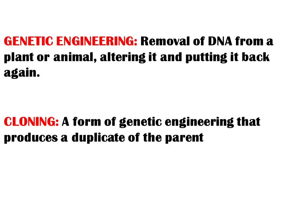 GENETIC ENGINEERING: Removal of DNA from a plant or animal, altering it and putting it back again.
