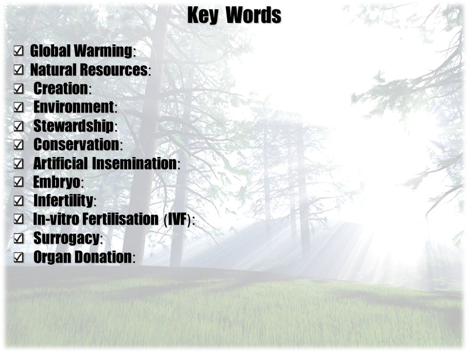 Key Words Global Warming: Natural Resources: Creation: Environment: