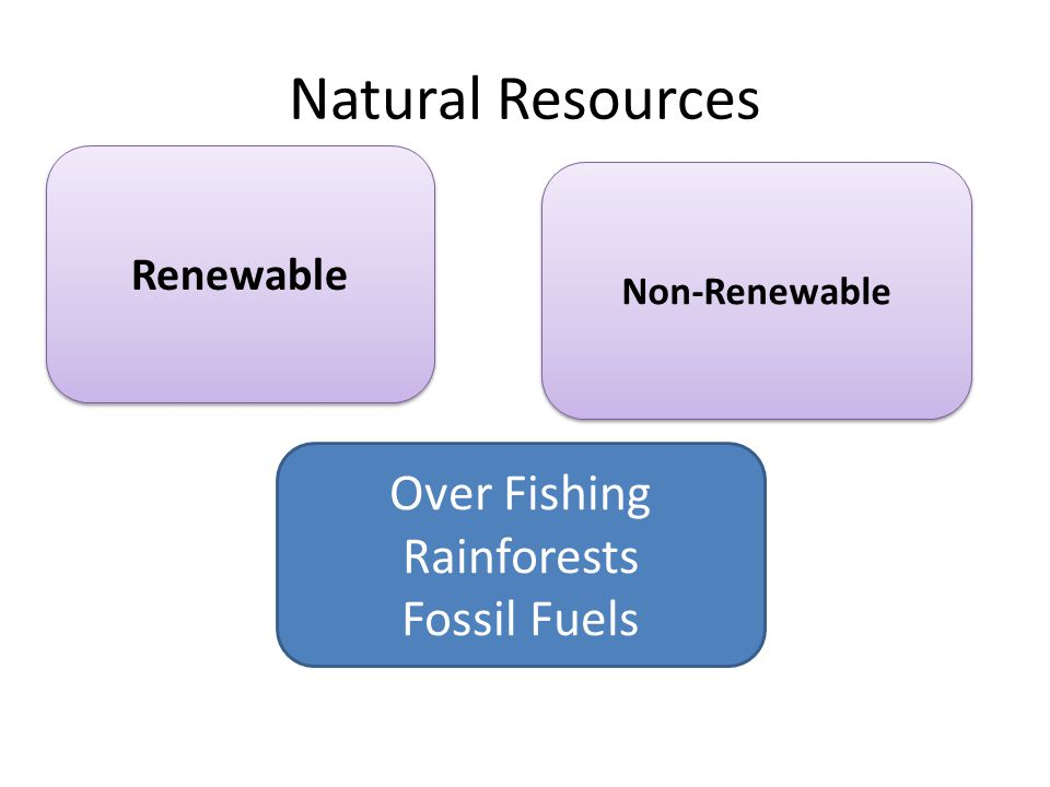 Natural Resources Over Fishing Rainforests Fossil Fuels Renewable