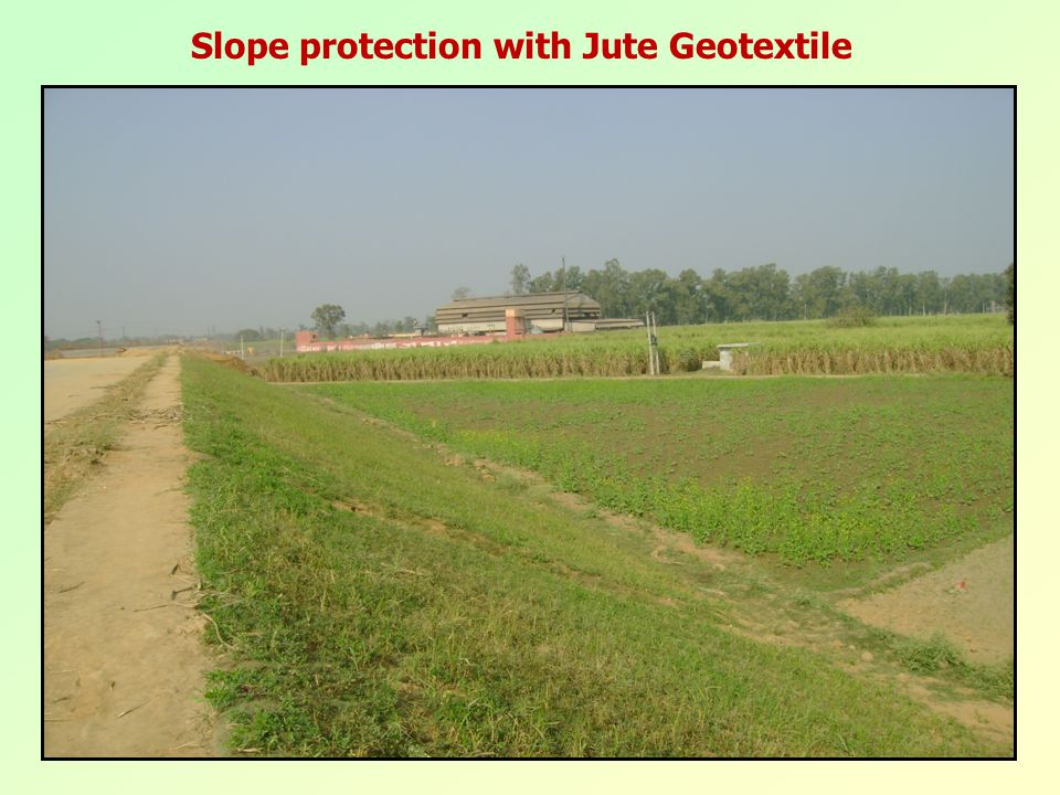 Slope protection with Jute Geotextile
