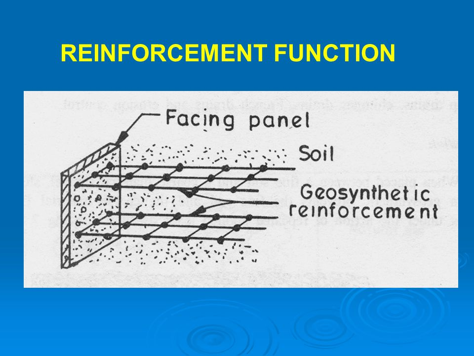 REINFORCEMENT FUNCTION