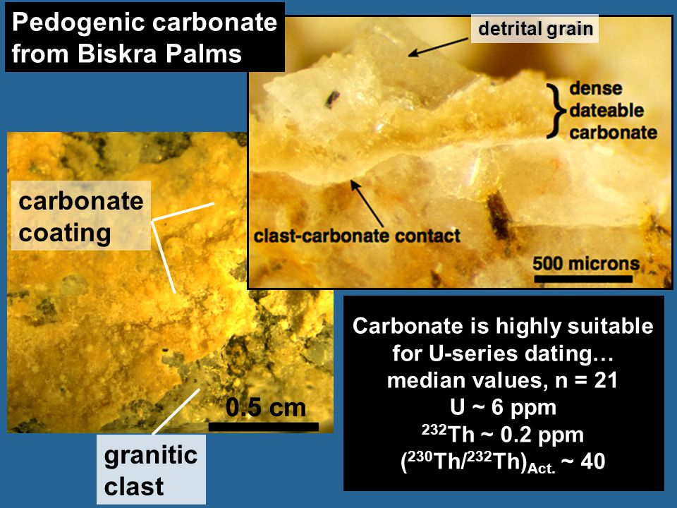 Carbonate is highly suitable