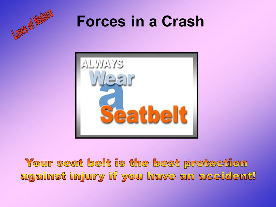 Forces in a Crash Laws of Nature Your seat belt is the best protection