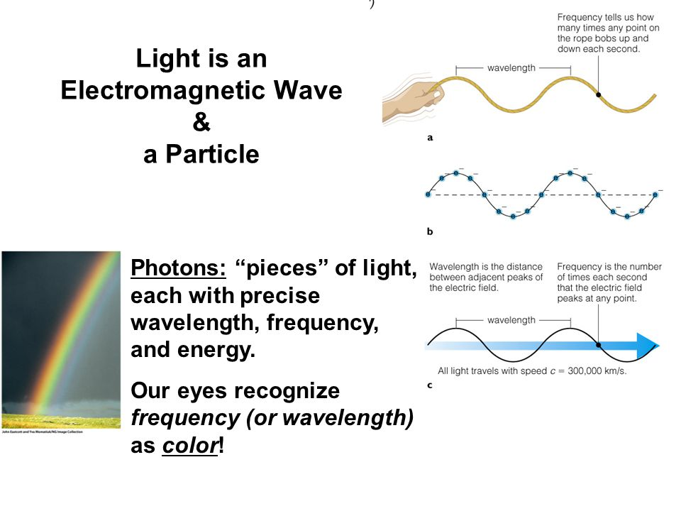 Light is an Electromagnetic Wave & a Particle