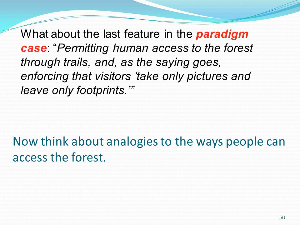 Now think about analogies to the ways people can access the forest.