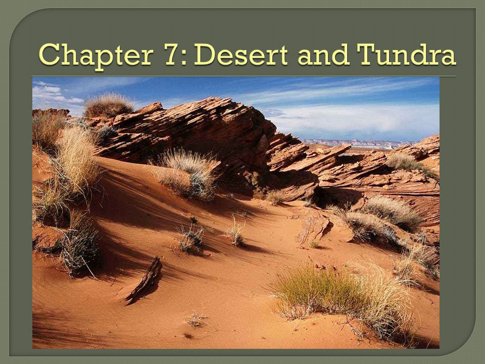 Chapter 7: Desert and Tundra
