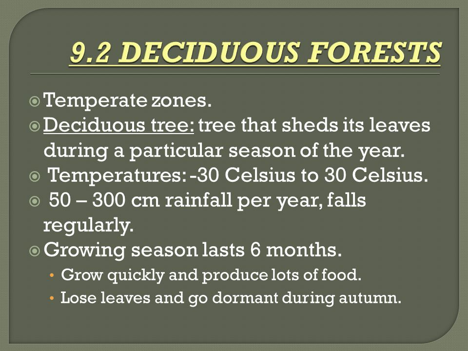9.2 DECIDUOUS FORESTS Temperate zones.