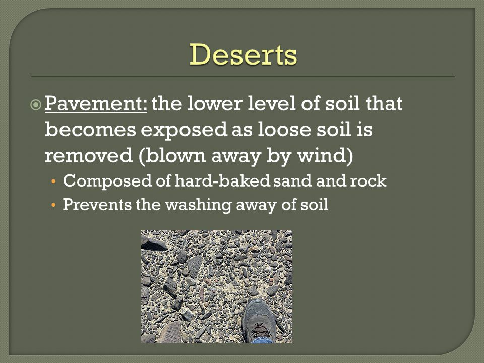Deserts Pavement: the lower level of soil that becomes exposed as loose soil is removed (blown away by wind)