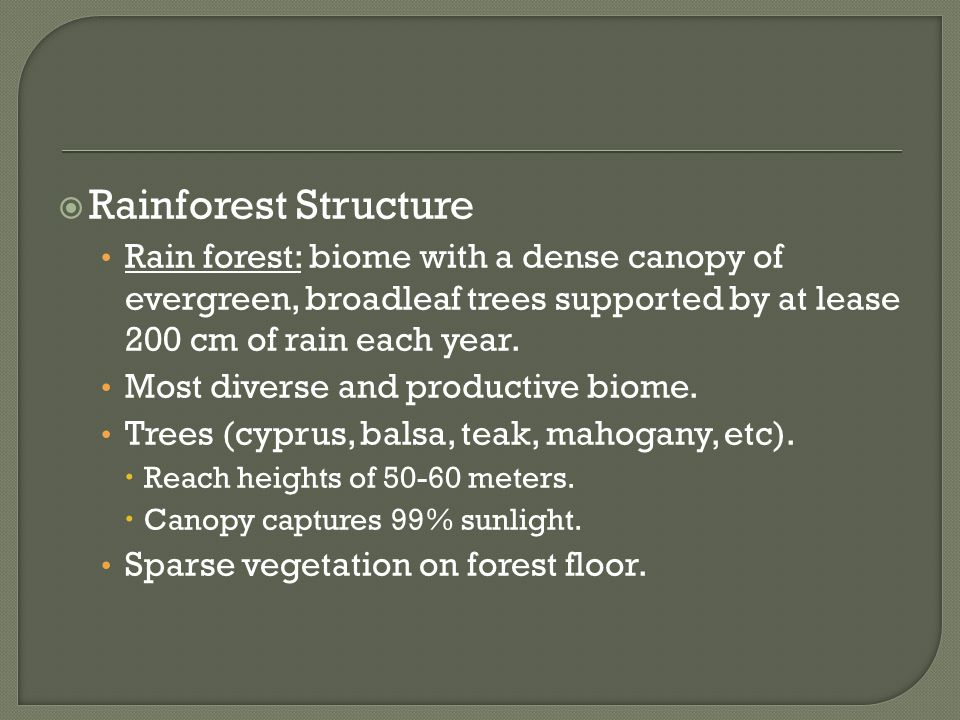 Rainforest Structure Rain forest: biome with a dense canopy of evergreen, broadleaf trees supported by at lease 200 cm of rain each year.