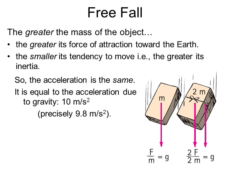 Free Fall The greater the mass of the object…
