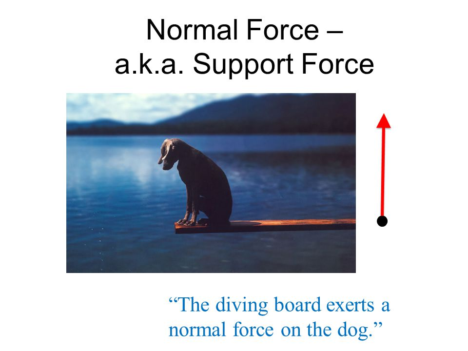 Normal Force – a.k.a. Support Force