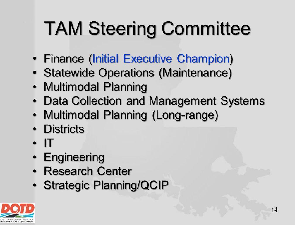 TAM Steering Committee