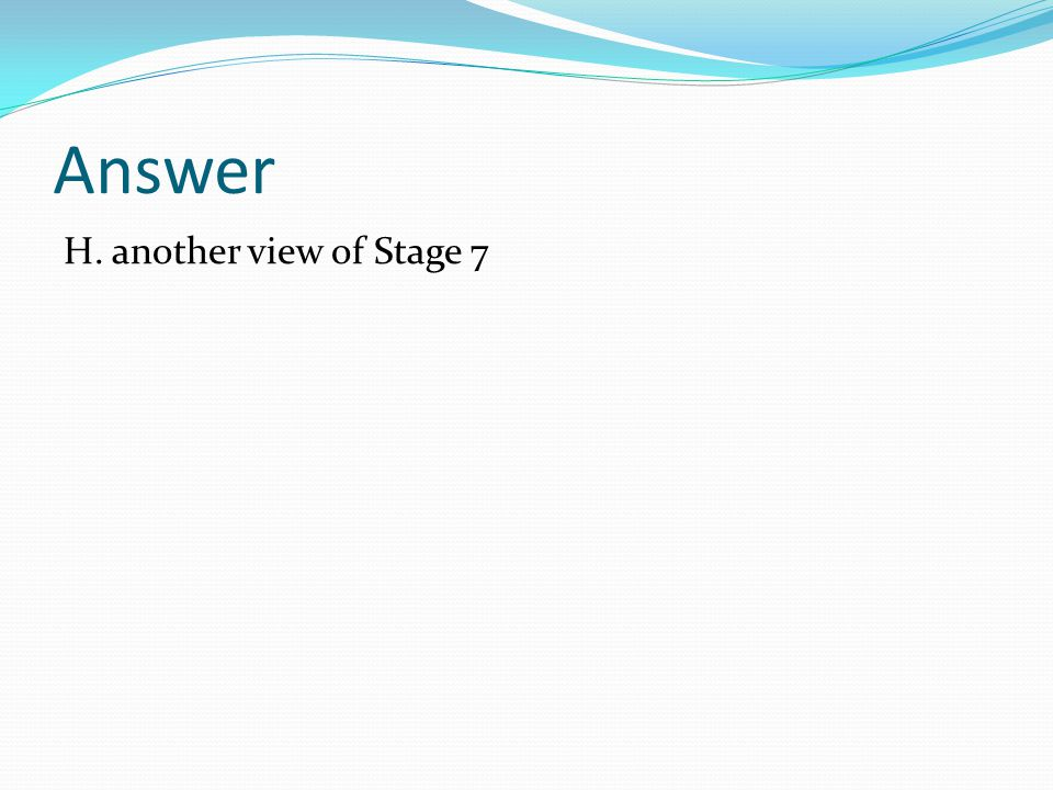 Answer H. another view of Stage 7