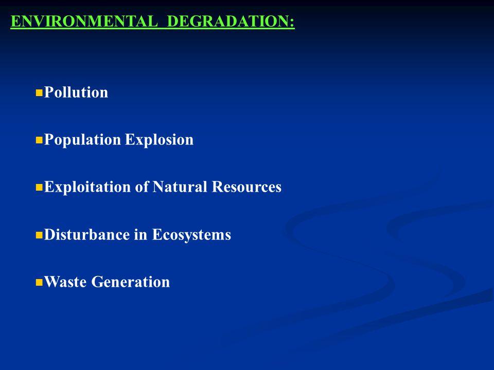 ENVIRONMENTAL DEGRADATION: