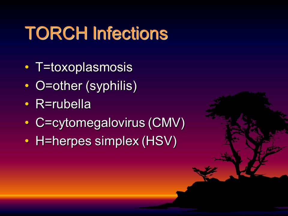 TORCH Infections T=toxoplasmosis O=other (syphilis) R=rubella