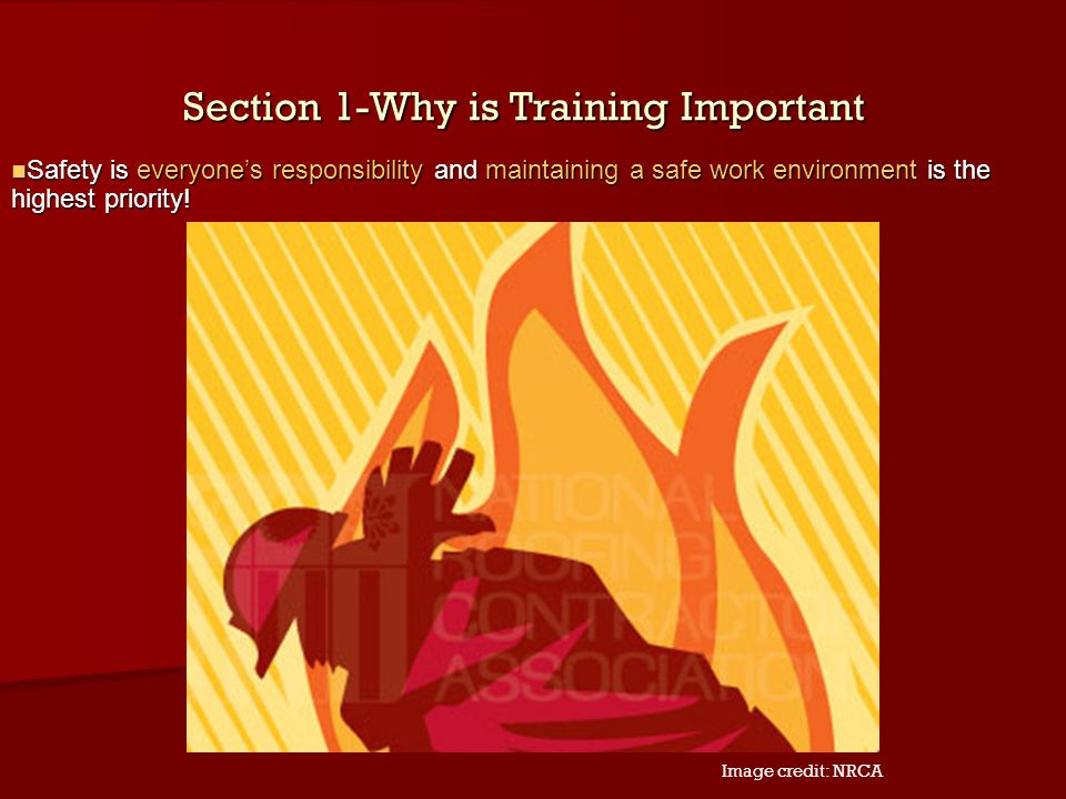 Section 1-Why is Training Important