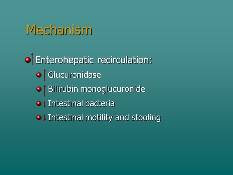 Mechanism Enterohepatic recirculation: Glucuronidase