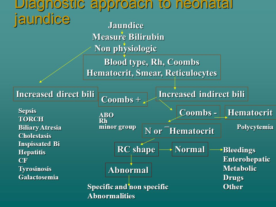 Diagnostic approach to neonatal jaundice