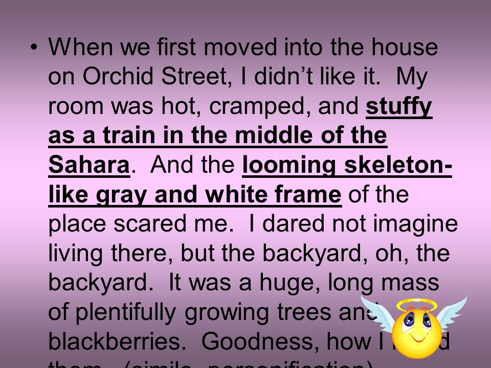When we first moved into the house on Orchid Street, I didn't like it