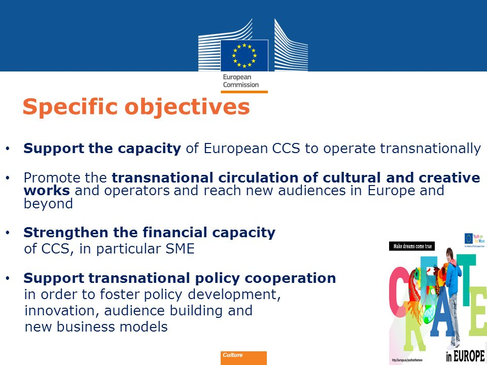 Specific objectives Support the capacity of European CCS to operate transnationally.