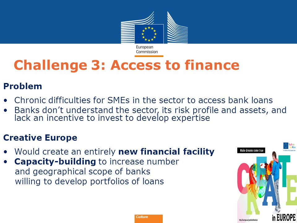 Challenge 3: Access to finance