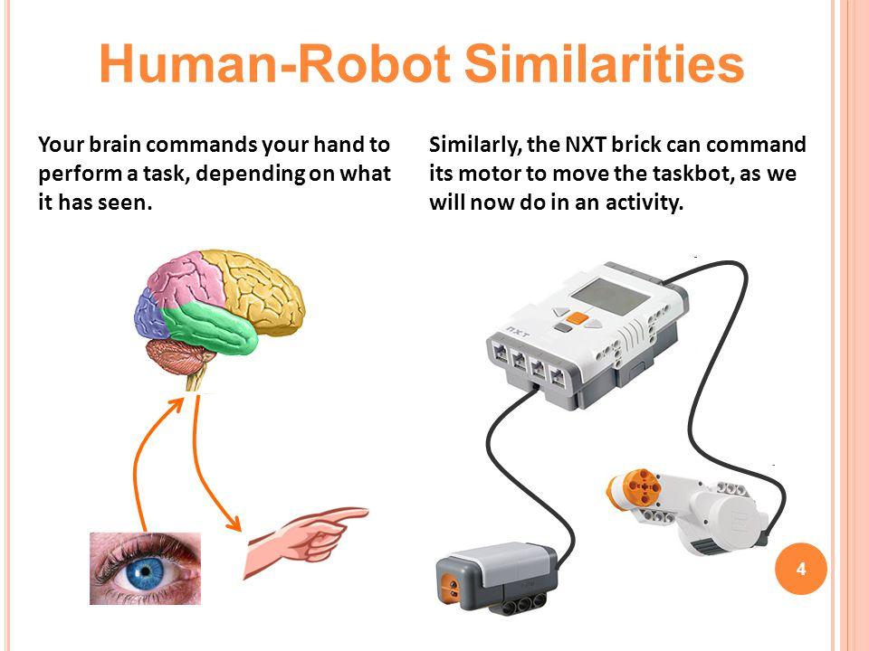 Human-Robot Similarities